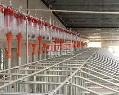 猪场自动饲喂料线定量桶