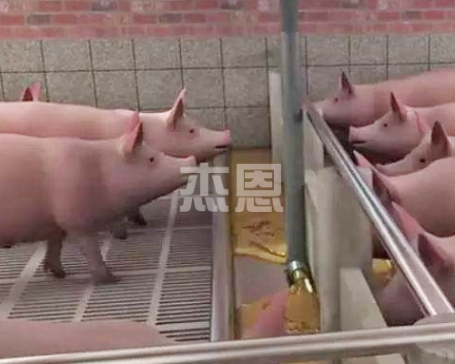 全自动养殖设备液态料线