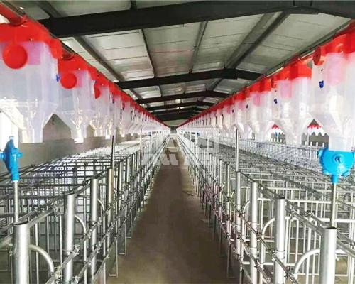北京养猪料线
