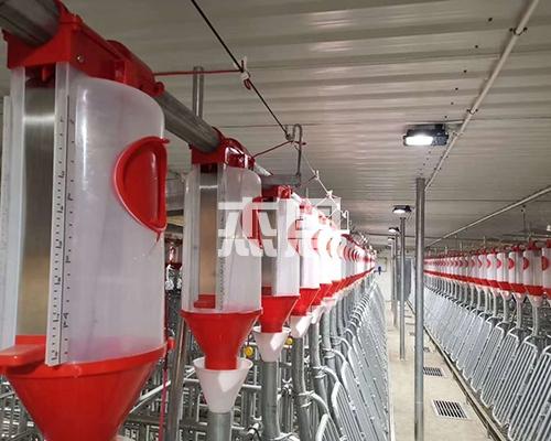 全自动养殖设备料线
