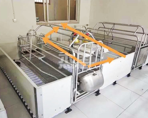 自动化养猪设备可以定时定点的进行供料工作。