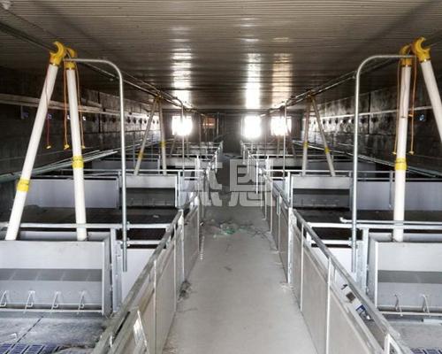 根据场地大小选择合适的全自动养殖设备。